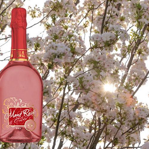 Frisch zu den Kirschblütentagen eingetroffen: Mont Rosé Cuvee